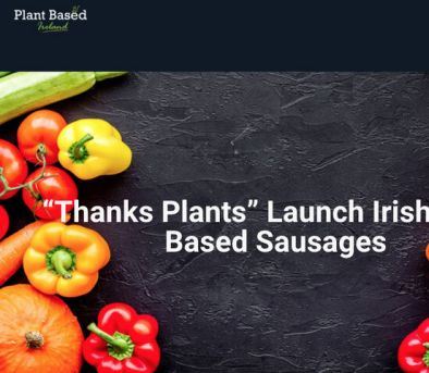 plant based article